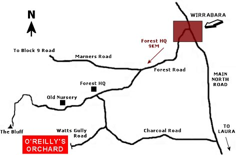 Map to O'Reilly's Orchard Wirrabara Forest